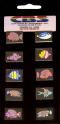 DICHROIC FISH